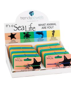 It's A Sea Life Box Program